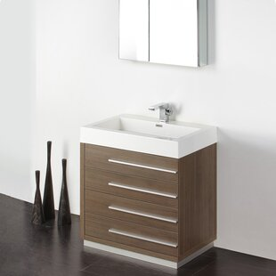 Looking for Senza 30 Single Livello Modern Bathroom Vanity Set ByFresca