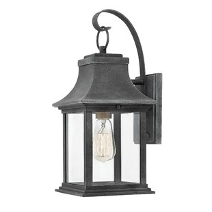 Adair 1-Light Outdoor Wall Lantern