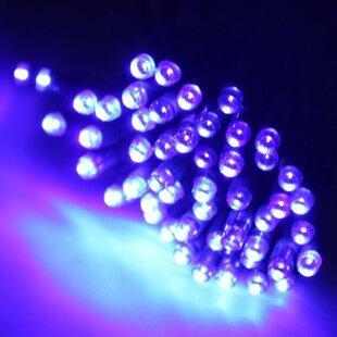 The Holiday Aisle New Christen 60 Light Solar String Light