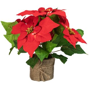 Poinsettia Flower Centerpieces You Ll Love In 2021 Wayfair
