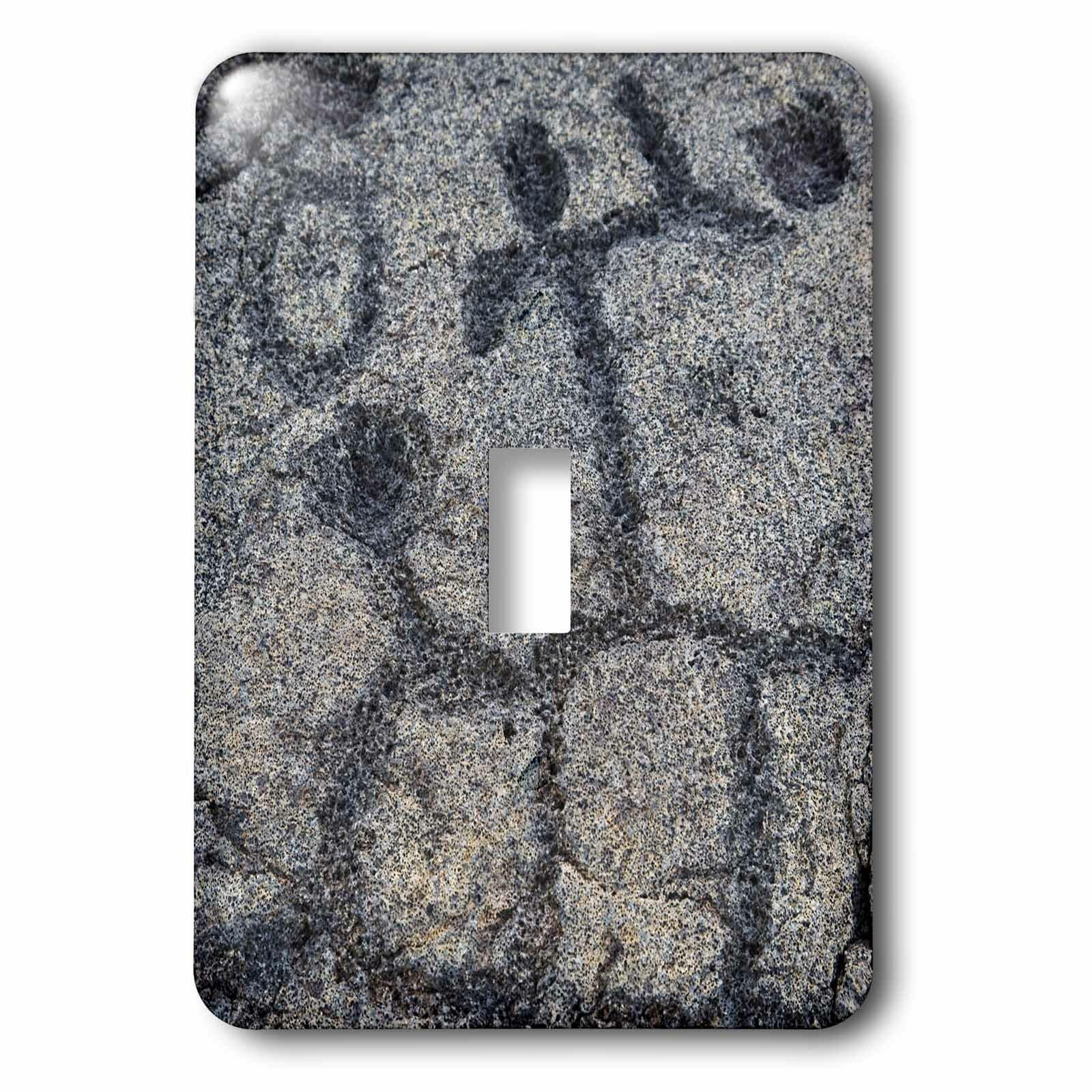 3drose Petroglyph Volcanoes Np Big Island Hawaii 1 Gang Toggle Light Switch Wall Plate Wayfair