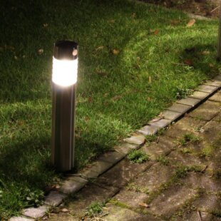 1 Light LED Pathway Light By Sol 72 Outdoor