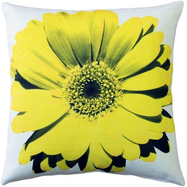 Latitude Run Otto Daisy Flower Indoor Outdoor Throw Pillow Reviews Wayfair