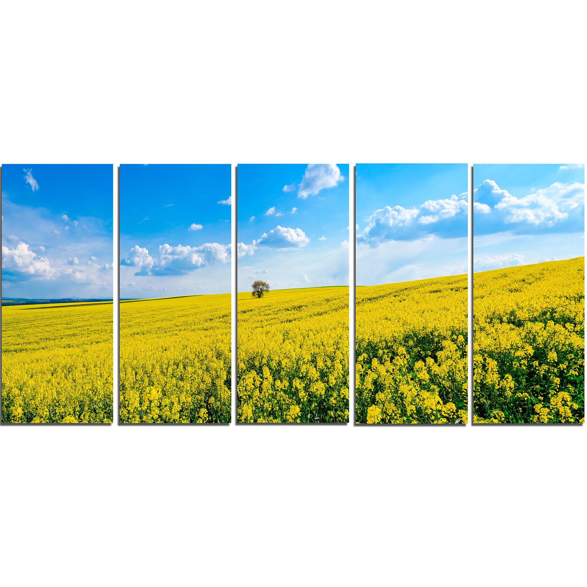 DesignArt Lone Tree in Blooming Cozla Park 5 Piece Wall Art on ...
