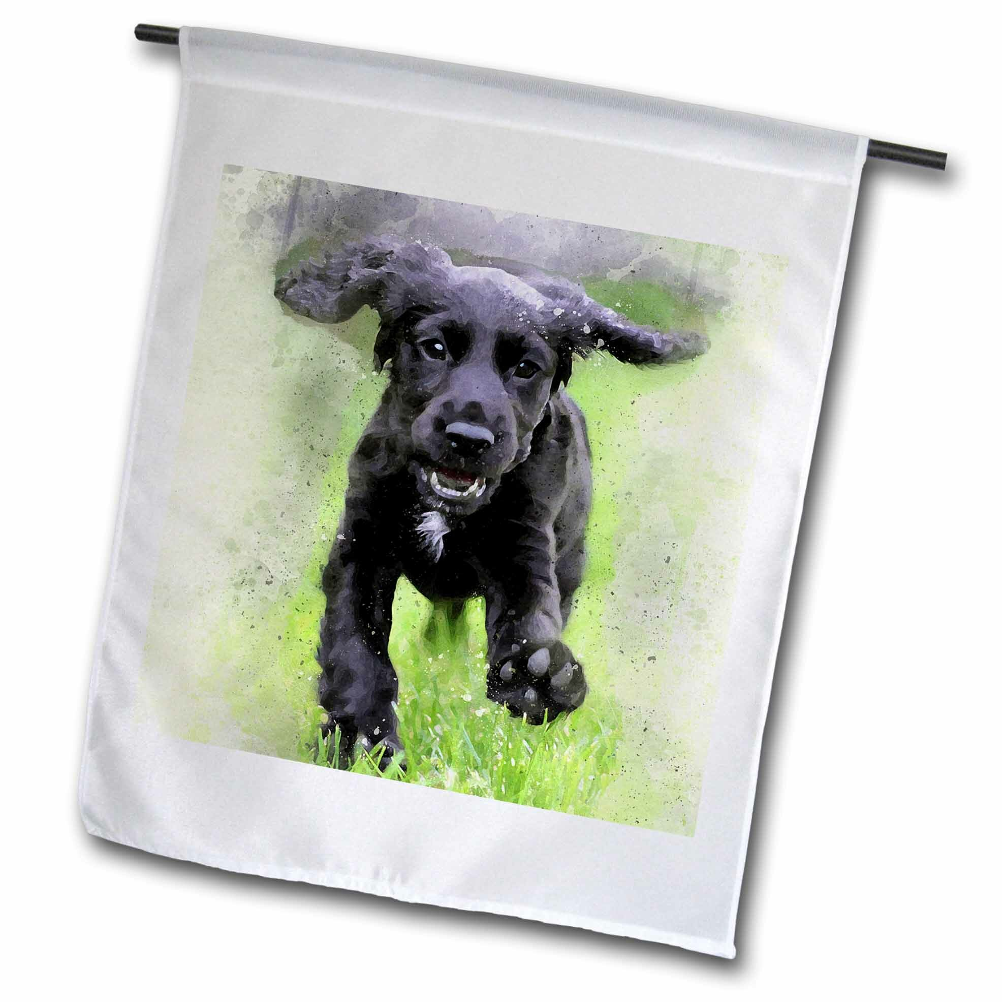 3drose Running Playful Labrador Retriever Puppy Polyester 18 X 12 In Garden Flag Wayfair