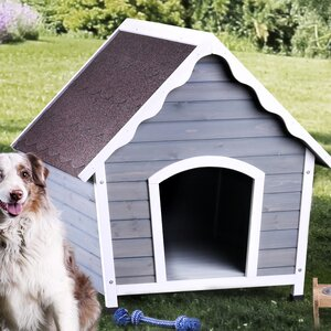 Olive Contemporary Dog House