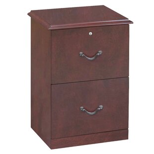 Red Barrel Studio Joe 2-Drawer Vertical File