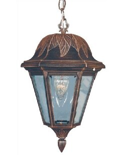 Special Lite Products Floral 1-Light Outdoor Hanging Lantern