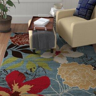 Vasser Tropical Blue/Red Indoor/Outdoor Area Rug