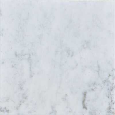 The Bella Collection Carrara 12 x 12 Honed Marble Field Tile in White
