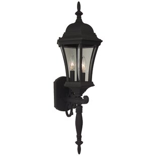 Oswego 3-Light Outdoor Sconce
