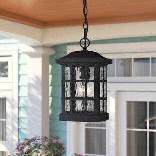 Cayman 1-Light Outdoor Hanging Lantern by Sol 72 Outdoor