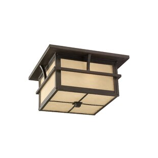 Bush Creek 2-Light Outdoor Flush Mount by Darby Home Co