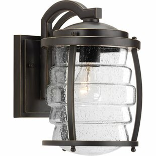 Loon Peak Celestine 1-Light Outdoor Wall Lantern