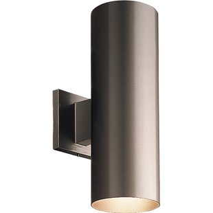 Brayden Studio Everts 2-Light Outdoor Sconce