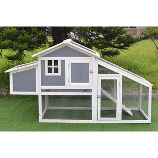 Small Chicken Coops You Ll Love In 2020 Wayfair