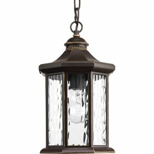 Darby Home Co Enola 1-Light Outdoor Hanging Lantern