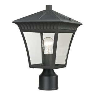 Berrywood Medium 1-Light Lantern Head