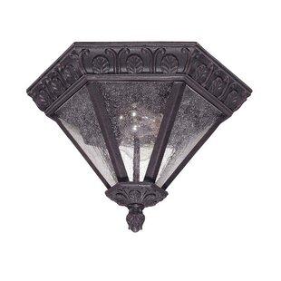 Shaw 2-Light Outdoor Flush Mount by Astoria Grand