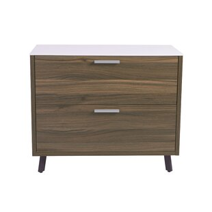 Wade Logan Barkeyville 2 Drawer Lateral File Cabinet