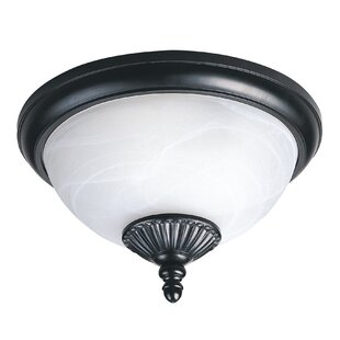 Inexpensive Atisha 60W 2-Light Outdoor Flush Mount By Red Barrel Studio