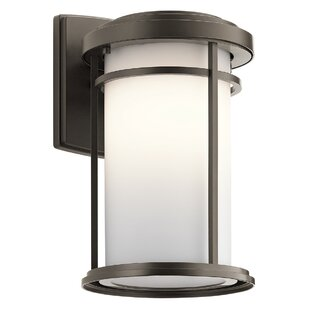 Ivy Bronx Scot 1-Light Glass Shade Outdoor Sconce