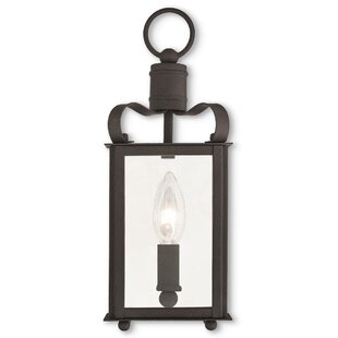 Best Review Robertson 1-Light Outdoor Hanging Lantern By World Menagerie