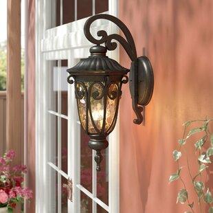 Astoria Grand Erickson 3-Light Outdoor Wall Lantern