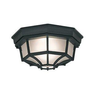 Charlton Home Slusser 1-Light ..