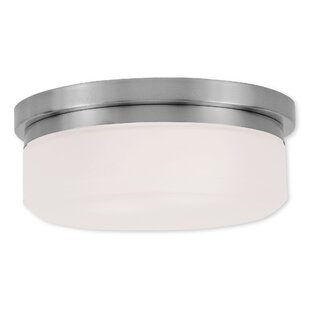 Ivy Bronx Cerie 2-Light Flush Mount