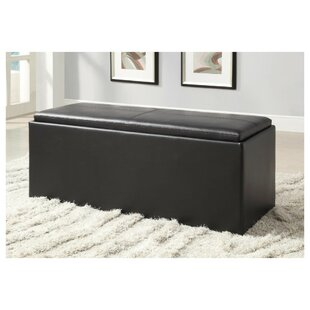 Newlin Faux Leather Storage Bench