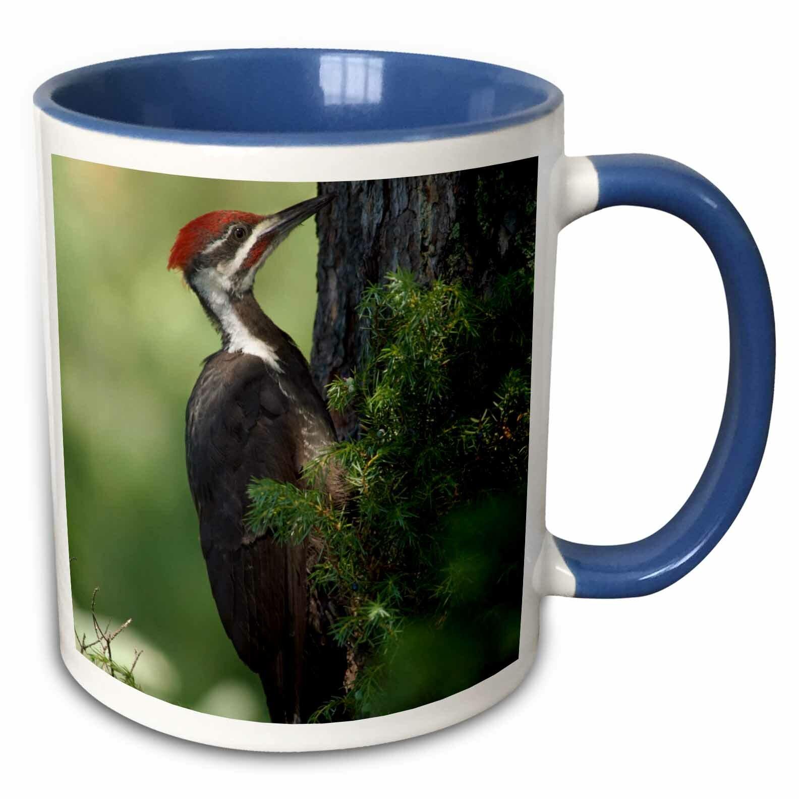 East Urban Home Pileated Woodpecker Bird Whitefish Montana Coffee Mug Wayfair