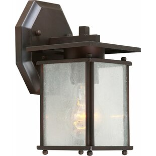 Ebern Designs Mcquaig 1-Light Outdoor Wall Lantern