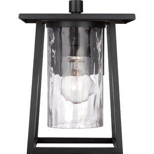 Mercury Row Bissonnette Outdoor Wall Lantern