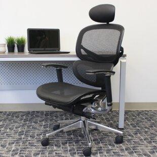 Patricio Mesh Task Chair