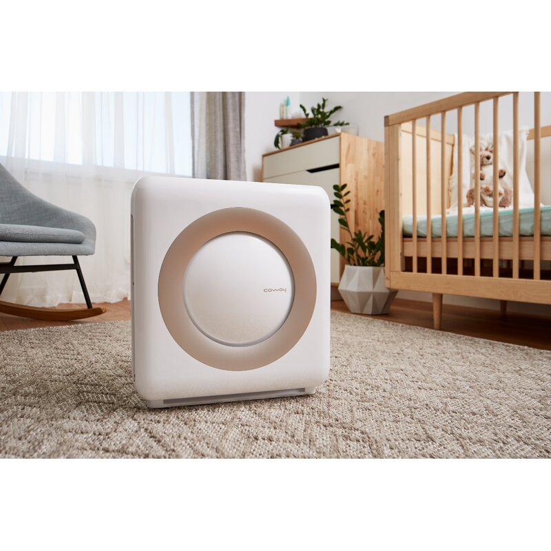 Coway Mighty Air Purifier With Hepa Filter Reviews Wayfair