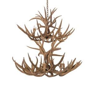 Loon Peak Scruggs Mule Deer 12-Light Novelty Chandelier