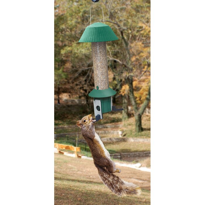 Squirrel Defeater Nut Tube Bird Feeder