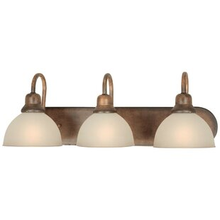 Shop For Bewley 3-Light Vanity Light By Fleur De Lis Living