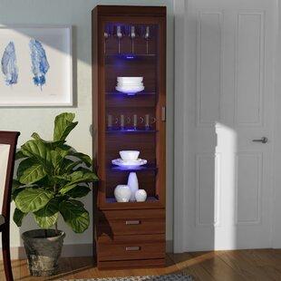 Latitude Run Artiaga Curio Cabinet