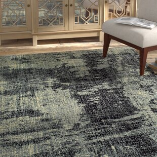 Look for Hedden Distressed Black/Gray Area Rug By Bloomsbury Market