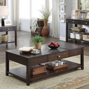 Alabaster Lift Top Coffee Table by Darby Home Co