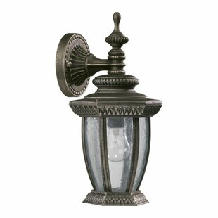 Best Reviews Winn 1-Light Outdoor Wall Lantern By Fleur De Lis Living
