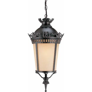 Volume Lighting New Orleans 1-Light Outdoor Hanging Lantern
