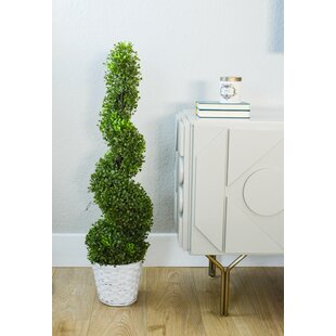 Artificial Boxwood Leaf Spiral Topiary Tree In Pot Set Of 2