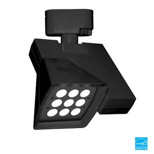 Logos Elliptical Track Head By WAC Lighting Ceiling Lights