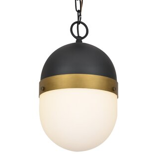 Find Needham 1-Light Outdoor Pendant By Latitude Run