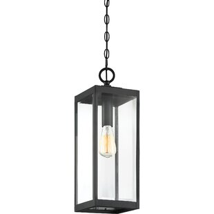 Viles 1-Light Outdoor Hanging Lantern