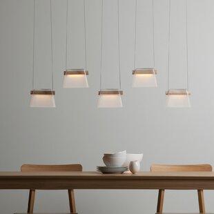 Cothran 5-Light LED Cluster Pendant by Corrigan Studio