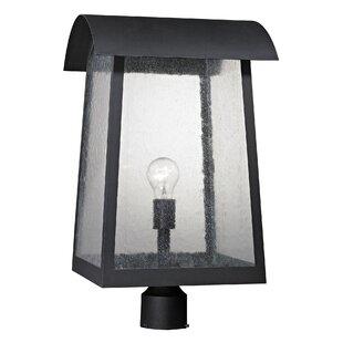 Online Reviews Myrtle Avenue Outdoor 1-Light Lantern Head By Brayden Studio